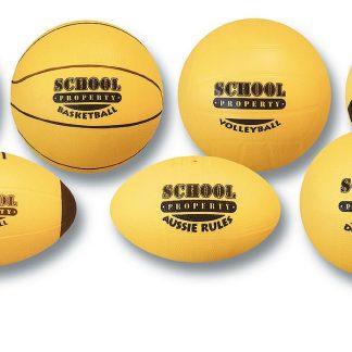 School Property PVC Balls - Netball-0
